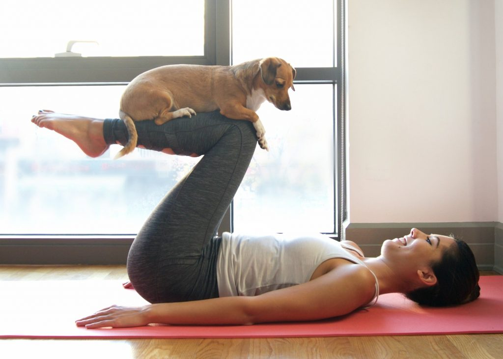 Doga: Yoga With Dogs