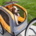 How to Attach a Dog Carrier on Your Motorcycle