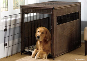 Other Alternative Ideas for Pet Carriers