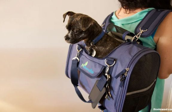 Sherpa Pet Carriers - The Premier Dog Carriers