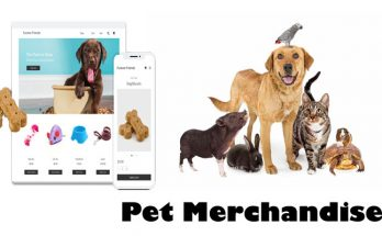 How Can you Start an internet Pet Store Selling Pet Merchandise?
